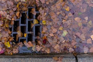 How To Keep Storm Drains Clear Simpson Plumbing