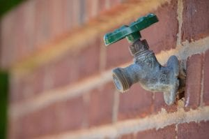 An outdoor faucet attached to a brick wall is seen.